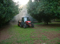 Spraying compost tea